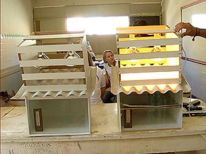 Estudantes criam forros para casas com caixas de leite