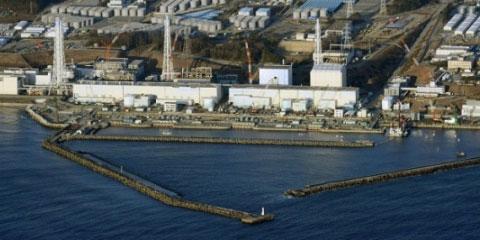 Ratos paralisam sistema de refrigeração da Usina de Fukushima