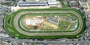 Jockey Club do Rio Grande do Sul está investindo em climatização para os cavalos