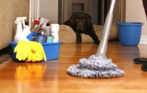 Limpeza do ambiente