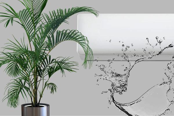 agua-do-ar-condicionado-pode-ser-usada-em-plantas
